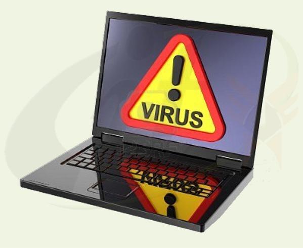 Какими бывают вирусы и как с ними бороться
